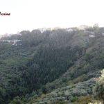 San Salvatore di Fitalia: Deferite 14 persone per i reati di truffa aggravata